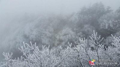 【隆冬百态】+峨眉+金顶雪景