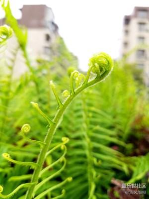 呼吸浸人心脾的空气,感受那雨后的嫩绿