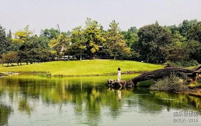 【秋色正浓】+杭州+西湖太子湾