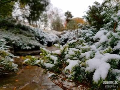 北京初雪现外拍差点没冻死~团结湖公园的雪景美cry!~