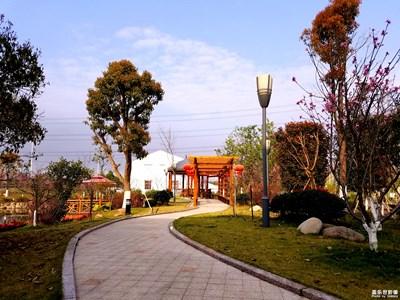 我眼中的世界+温州+美丽新农村