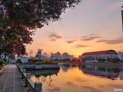 《初夏风情画》+厦门+漫步筼筜湖,听听花开的声音