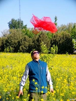 【2周年 风】+路径身边的风