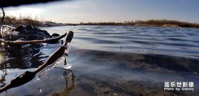 《我眼中的十一月》+初冬的哈尔滨