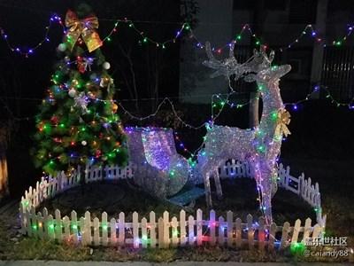 【不一样的冬  不一样的南北】+上海寒风中的圣诞灯展