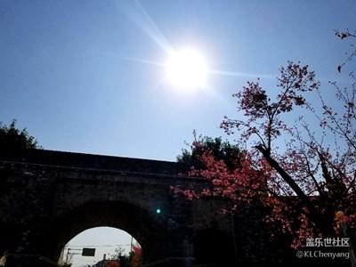 S8-风景-阳光