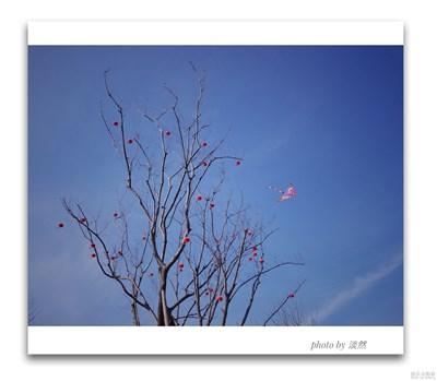 《春风》+春光明媚