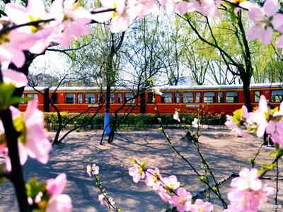 【人间四月天】+来往春天的列车