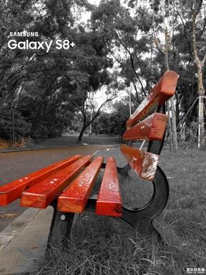 公园的长凳