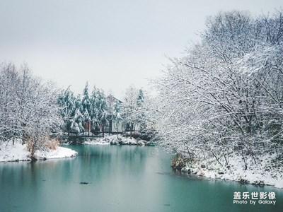【中国最美瞬间】西溪雪景