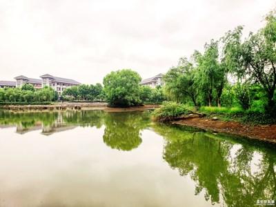 【中国最美瞬间】+静谧的湖