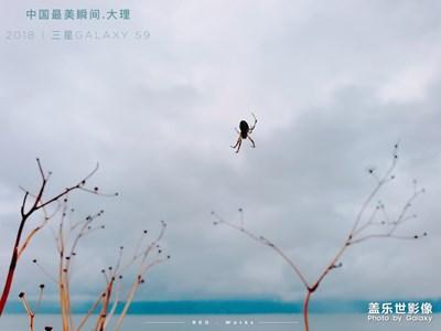 【中国最美瞬间】大理随记(二)