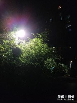 随手拍的夜景