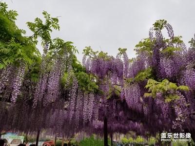 【自然之美】+春夏秋冬