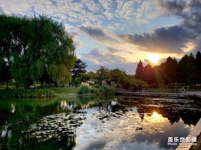 秋游辰山,静安公园