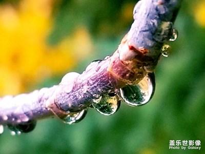 【秋至】+落雨的秋