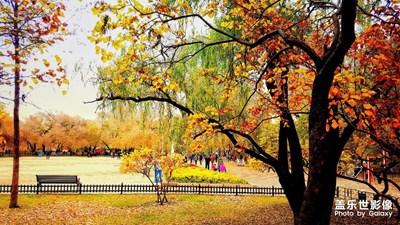 赤橙黄绿蓝靛紫