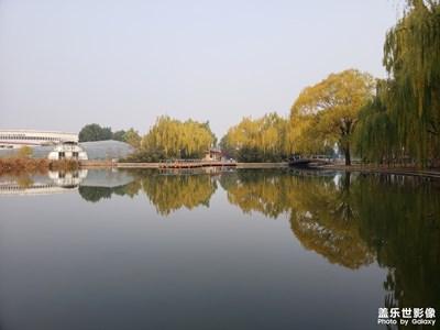 海淀公园之秋