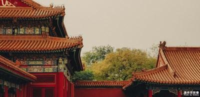 【为中国添色】华夏千年的美藏那一颦一色里 (下-专业组)