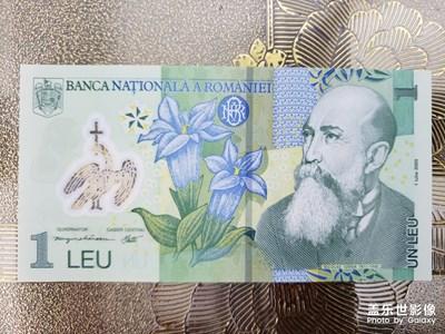 罗马尼亚的纸币
