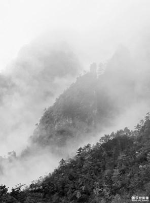 雾里的山林风景