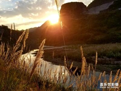 中国色彩-夕阳下的芦苇