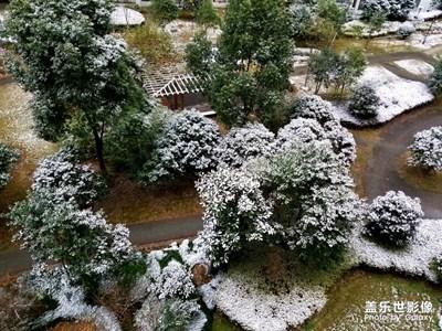 【纬度的色彩】+上海初雪
