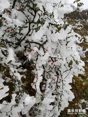 中国色彩-冬日美图
