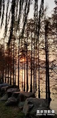 独墅湖的落日
