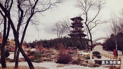 雪后植物园