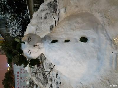 【2019嗨翻新年】瑞雪兆丰年