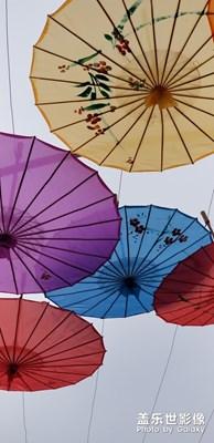 【开门红】+花伞是媒红