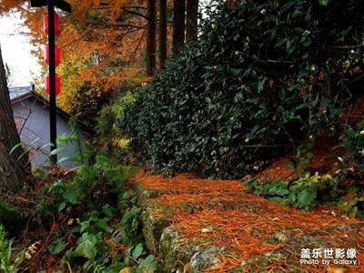 深秋时节-我的故乡