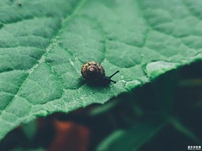 【旅行】@小蜗牛