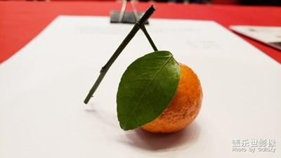 小橘子来几张