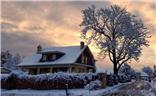 盐湖城,一场不期而至大雪