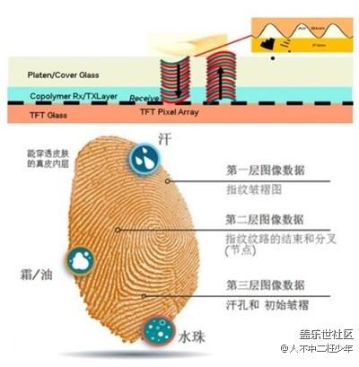 【种草】三星S10的超声波屏下指纹识别到底是什么?