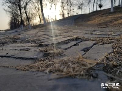 【时光】+夕阳光之馈赠