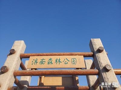 【踏春】+济南森林公园