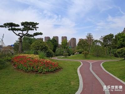 路边的小公园