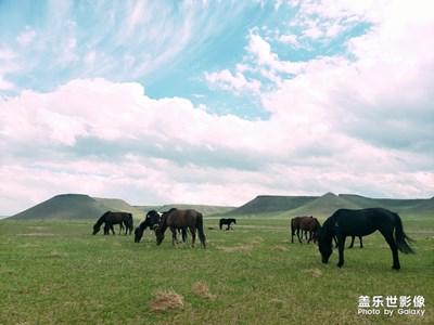 【走进夏天】+草原火山牧场