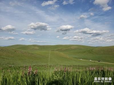 【向往的天空】+草原上的天