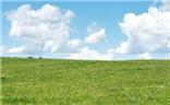 紅石崖高山草原