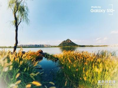 鹊华秋色系列之水中仙山