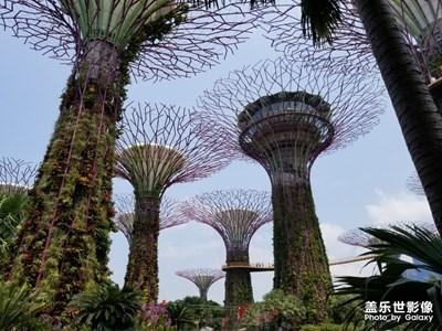 新加坡之行,科幻城市