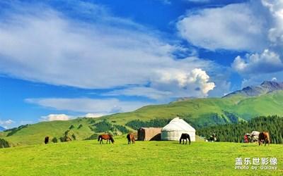 大美新疆——唐布拉草原