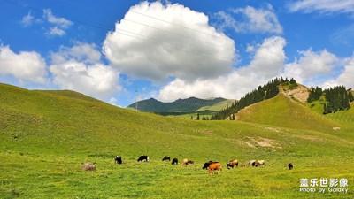 天边的云——草原牧歌