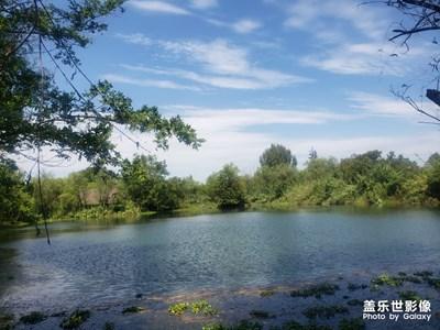 西溪湿地随拍