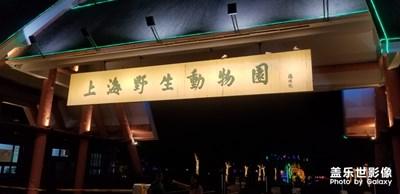 【游记分享】+上海游