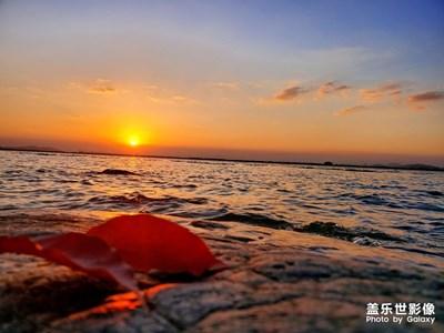 太湖夕照之秋叶篇